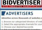 可以和谷歌联盟媲美的国外联盟:bidvertiser